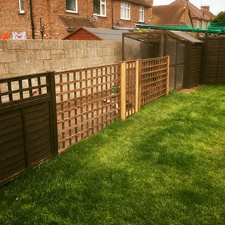Lattice fencing for a chicken run